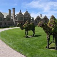 Fellows Trip to Newport Rhode Island