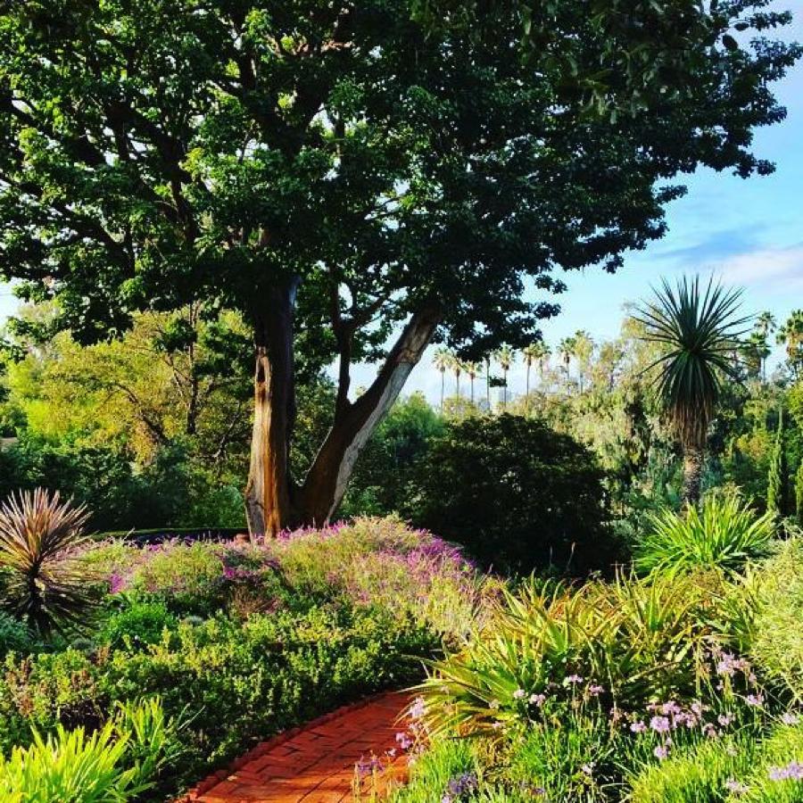 italian-terrace-garden-virginia-robinson-gardens-beverly-hills