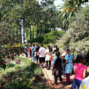 Docent-led children's tours