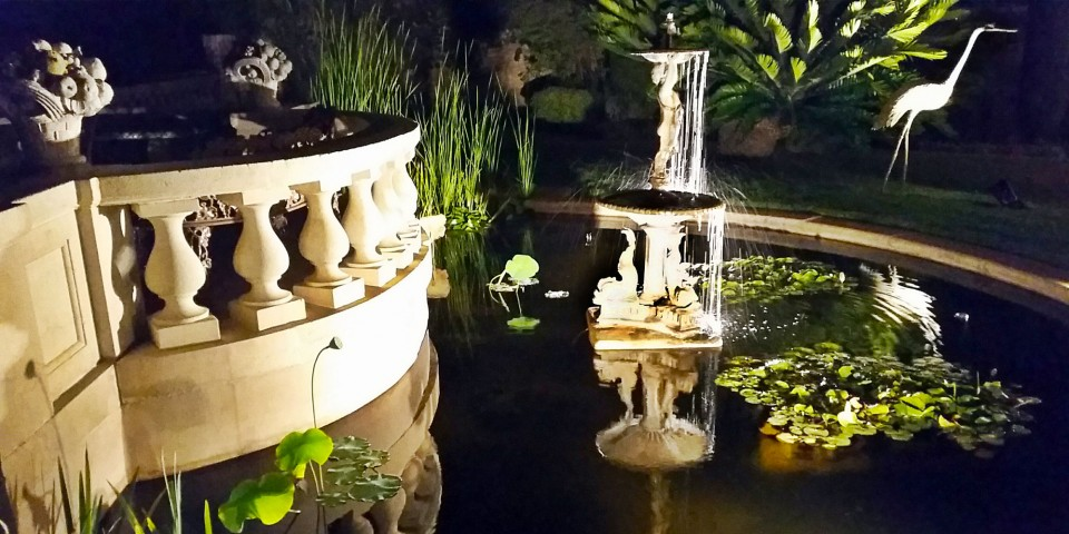 Lily Pond on the Great Lawn at night
