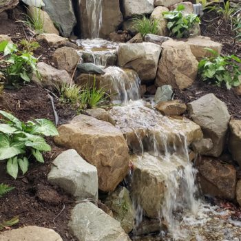 A Cascading Waterfall Benefits the Children's Wildlife Pond
